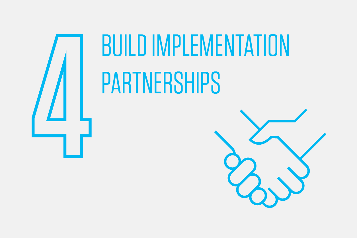 Build DMS Implementation Partnerships